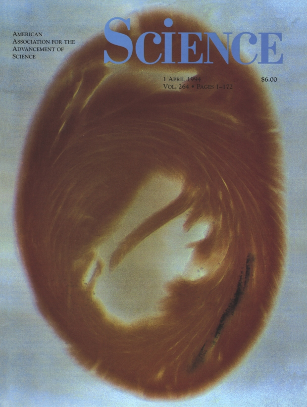 science magazine cover JPEG