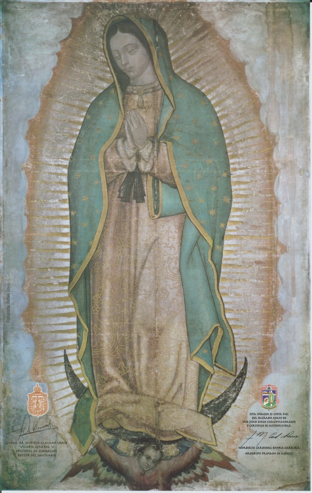 Our Lady of Guadalupe crop